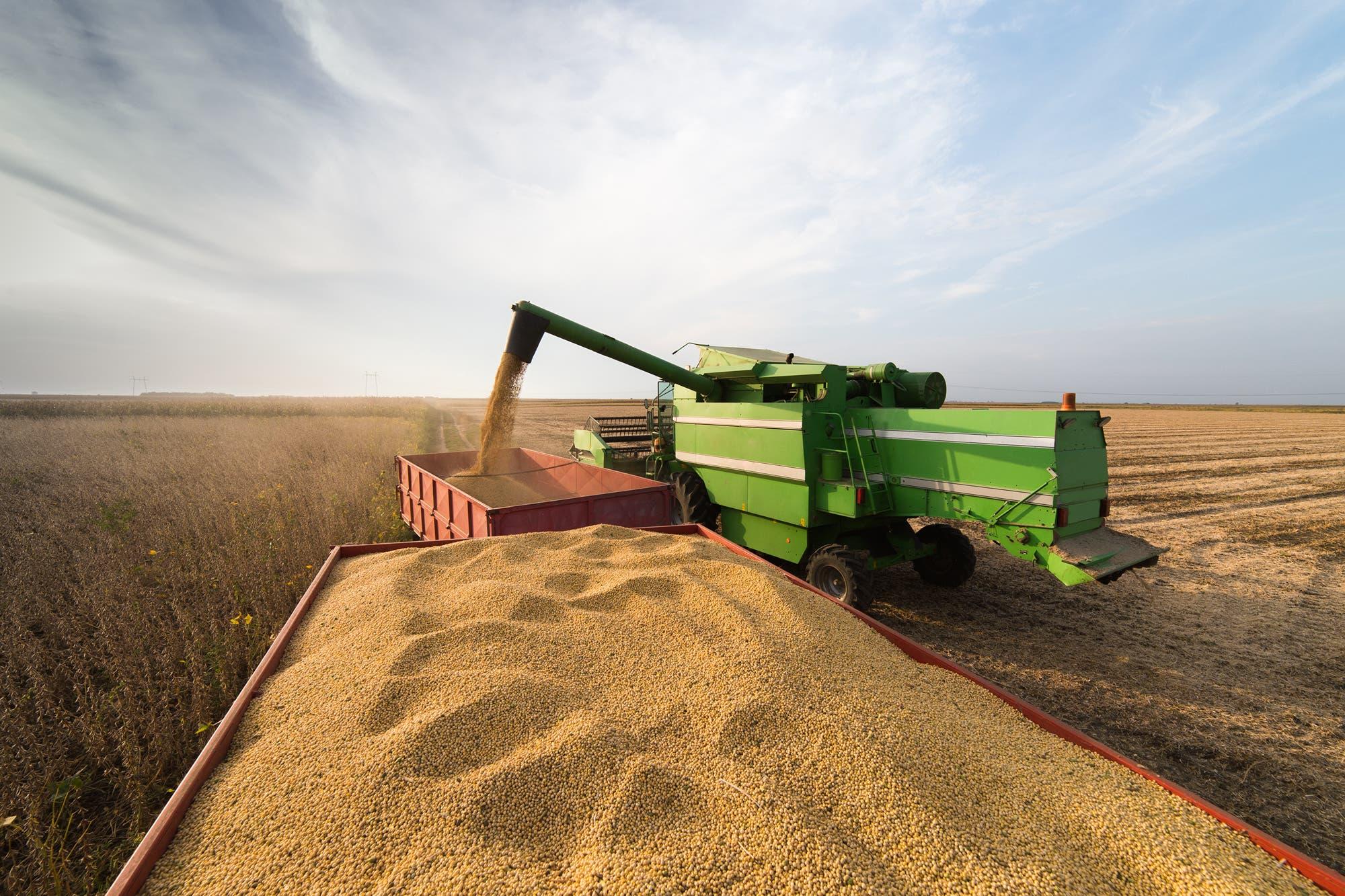 El mercado de granos se paralizó por el temor a una posible suba de retenciones