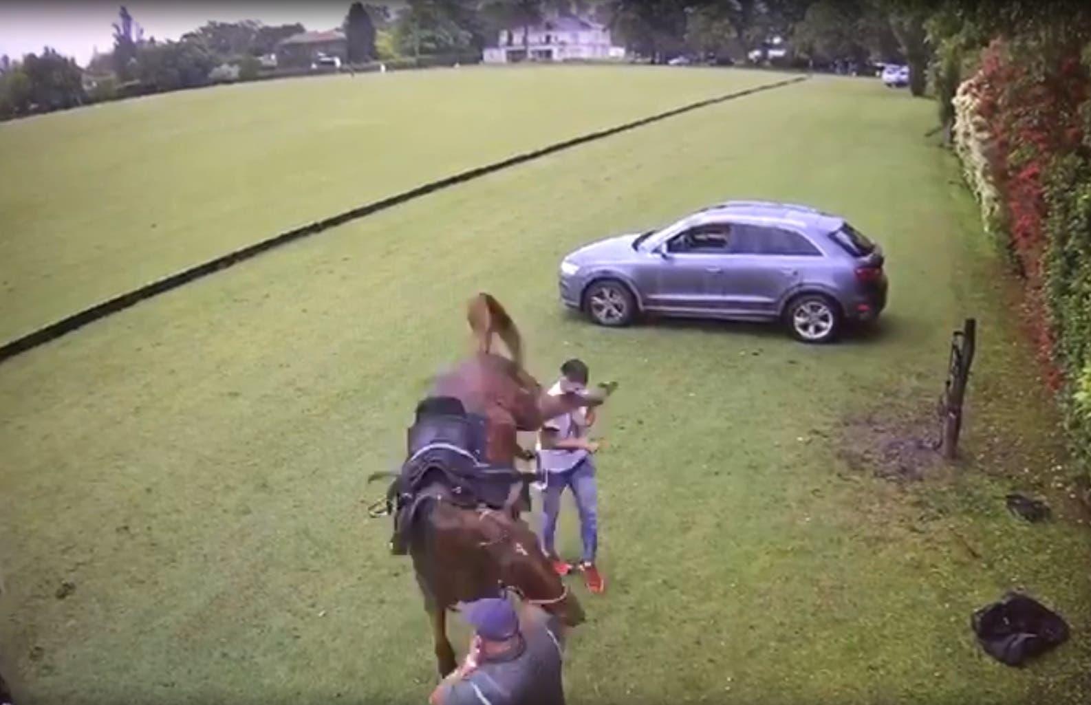 Susto: le dio una palmada a un caballo de polo y terminó dormido de una patada al mentón
