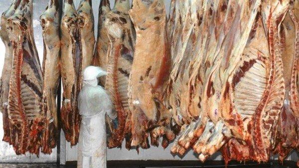 """para-los-frigorificos-es-""""altamente-preocupante""""-el-cepo-a-la-exportacion-de-carne"""